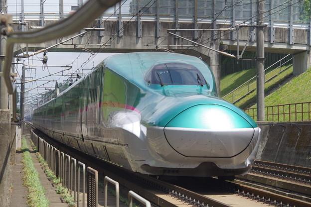 E5系U11編成 (1)