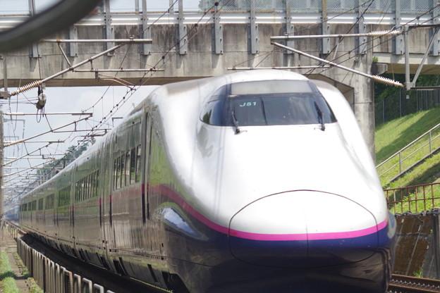E2系J51編成  (1)