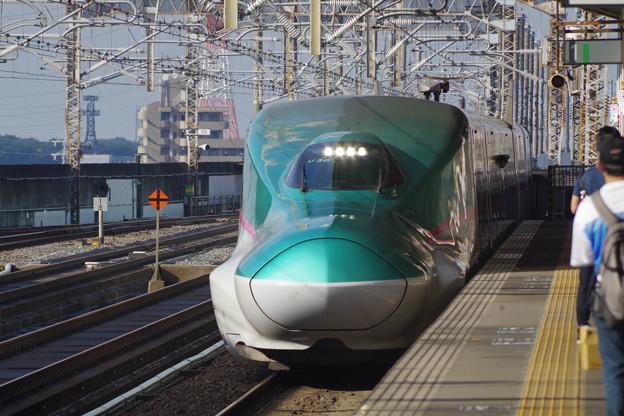 E5系U30編成 (2)
