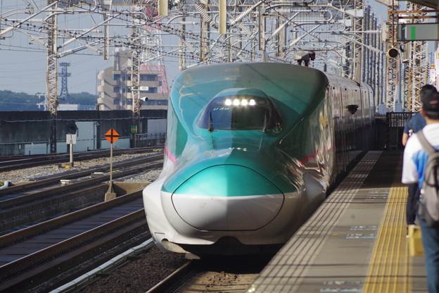 E5系U30編成 (3)