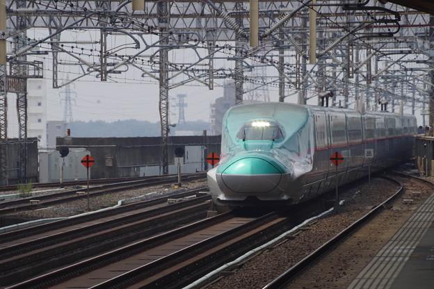 E5系U31編成 (1)