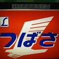 485系ヘッドマーク【L つばさ】 (1)