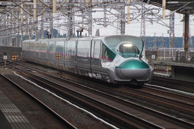 E5系U31編成  (6)
