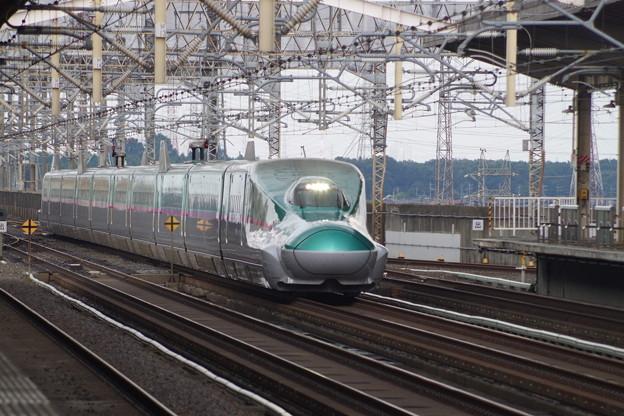 E5系U31編成  (3)