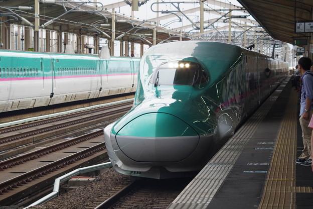 E5系U23編成 (10)