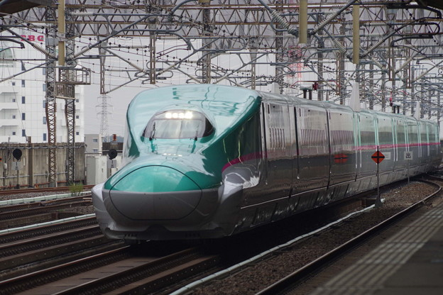 E5系U12編成  (4)