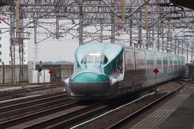 E5系U12編成  (2)