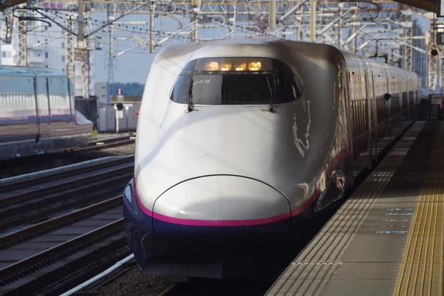 E2系J66編成 (8)
