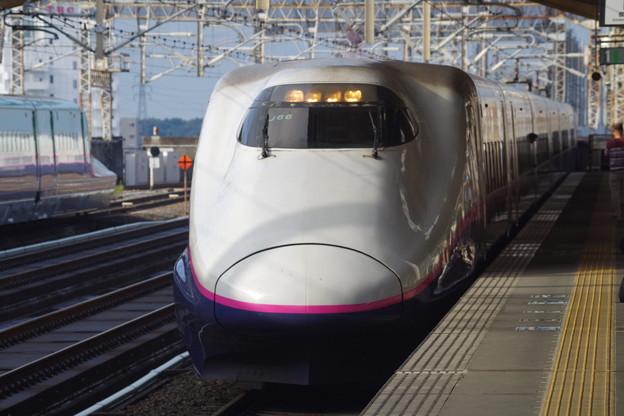 E2系J66編成 (7)