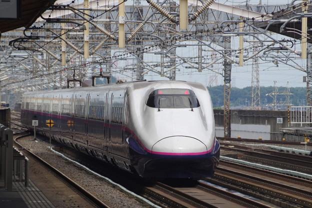 E2系J61編成 (9)