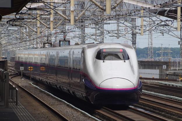 E2系J61編成 (8)