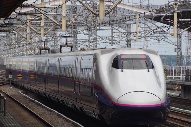 E2系J61編成 (6)