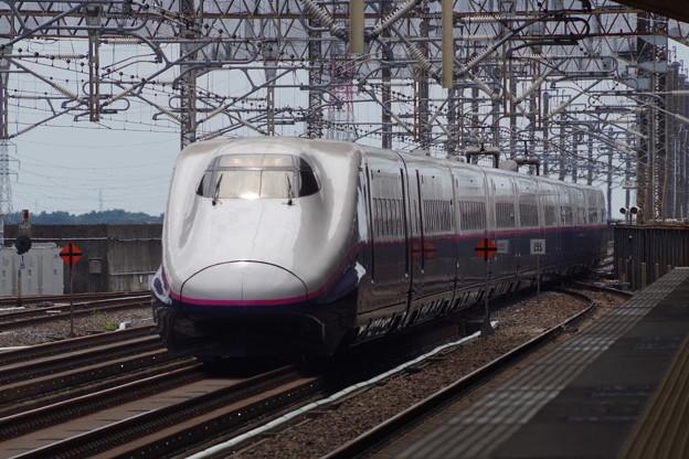E2系J61編成 (3)