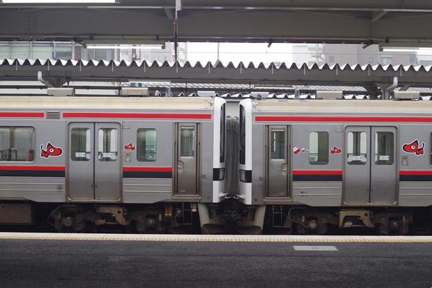 719系H15編成+H12編成 (2)