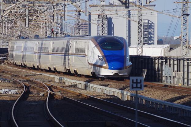 E7系F6編成 (4)
