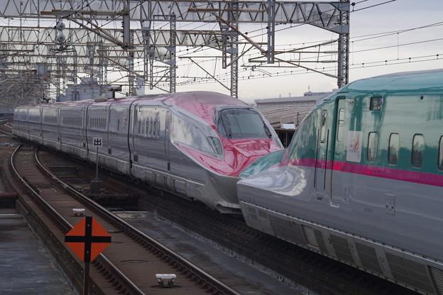 E5系U21編成 +E6系Z21編成 (7)