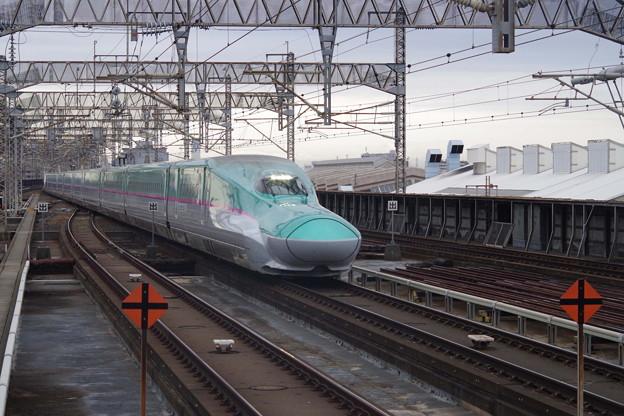 E5系U21編成 +E6系Z21編成 (1)