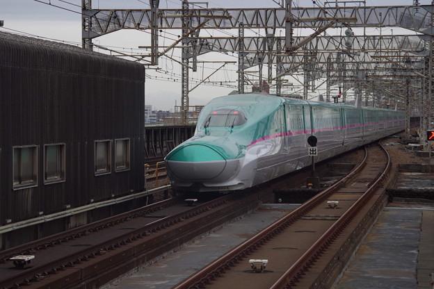 E5系U34編成 (11)