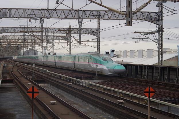 E5系U12編成  (12)