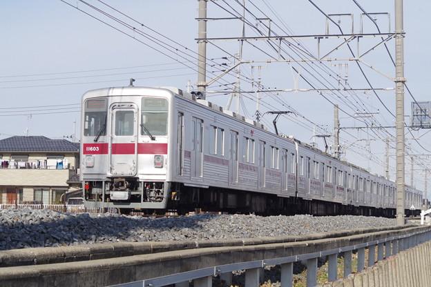 IMGP1355