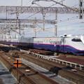 E2系J75編成 (1)