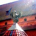 ーーポーランド旅行の写真の続きーー井戸の屋根の飾りは幸運の鳥コウノトリ