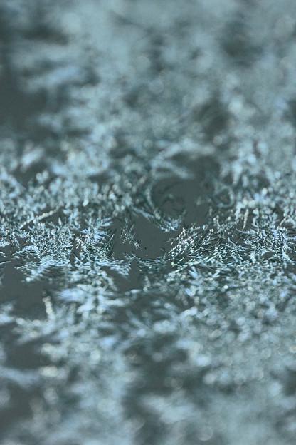 Photos: *ウインドウの霜*