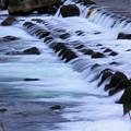 Photos: *犀川の流れ*