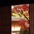 Photos: 四角い秋