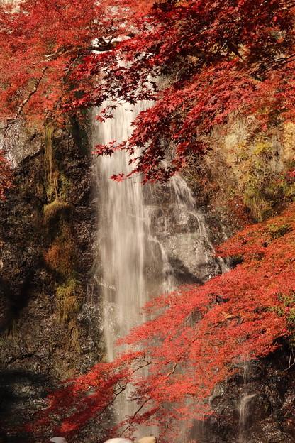 Photos: 人生初の滝撮り