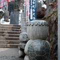 写真: かっぱ-3605