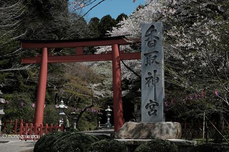 01香取神宮_鳥居-3780
