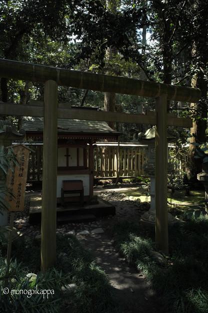 写真: 11_匝瑳神社-3798