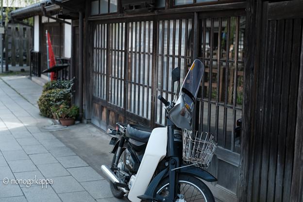 写真: 12かぶ-3886