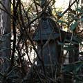 写真: 榛名神社_顔のある祠_こっちを見てる!-4097