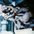 写真: 13榛名神社_本殿_彫刻-010008