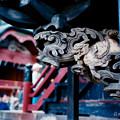 写真: 14榛名神社_本殿_彫刻-010013