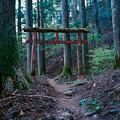 写真: 秋葉神社_2の鳥居_film-010026