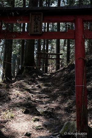 秋葉神社_1の鳥居-4027