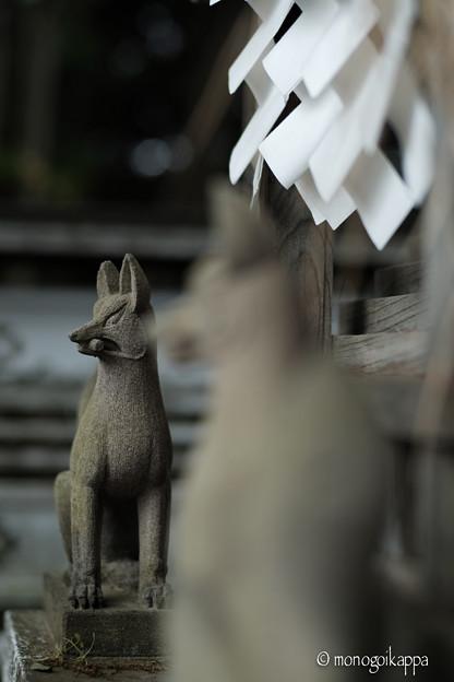 小川寺_お稲荷さん-4267