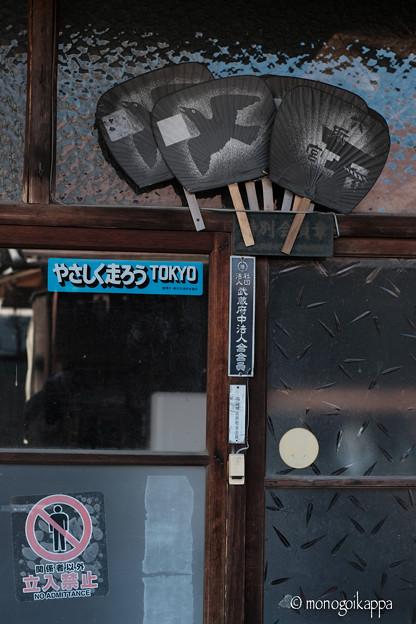 写真: 八咫烏-2924