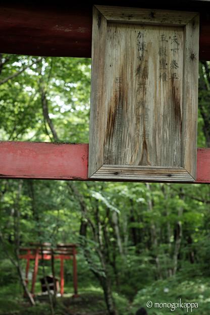 写真: 加護丸稲荷-05_三の鳥居-5604