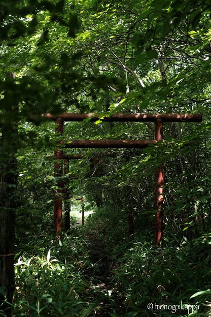 写真: 黒髪山神社_相馬山鳥居-5637