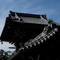 写真: 帝釈天_屋根-5685