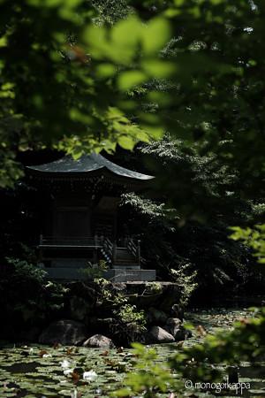 滝不動_弁天池-5732