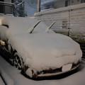 写真: 大雪_ツノダシ-