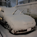 大雪_ツノダシ-