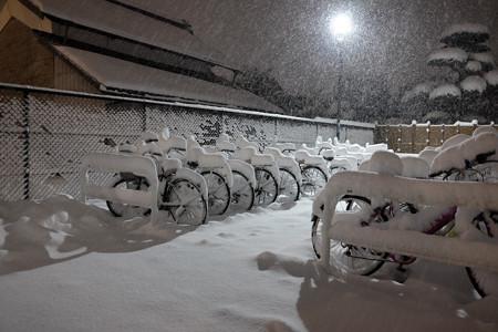 大雪_自転車置き場-3973