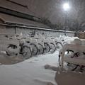 写真: 大雪_自転車置き場-3973