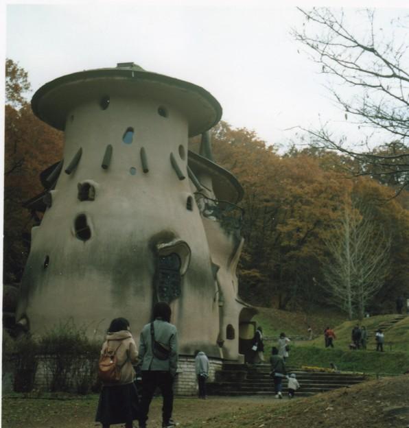 Rolleicord_キノコの家